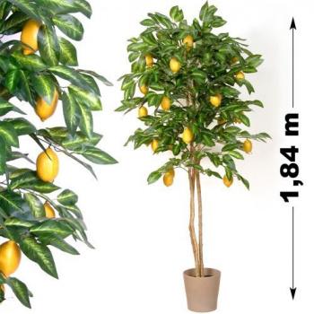 Umělá rostlina - citrusovník jako živý vč. citronů, 184 cm