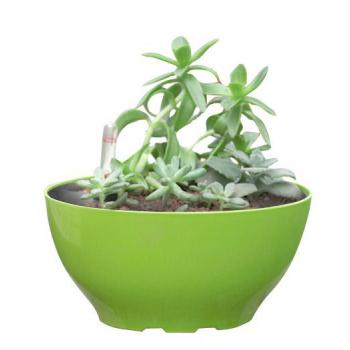 Okrasný samozavlažovací květináč oválný, lesklá zelená, 22 cm