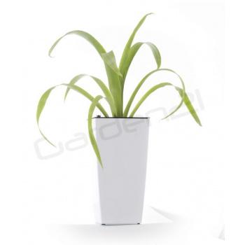 Dekorativní samozavlažovací květináč čtvercový  26cm, bílý