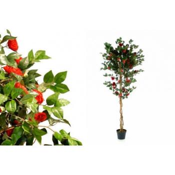 Umělá Vistárie s květy jako živá, kmen z pravého dřeva, 200 cm