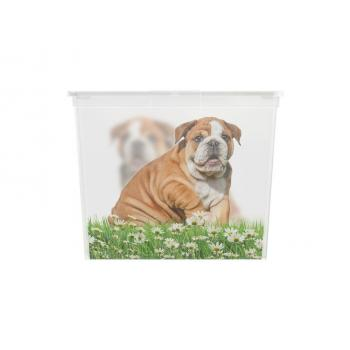Velký úložný plastový box s víkem, průhledný + potisk psi, 50 L