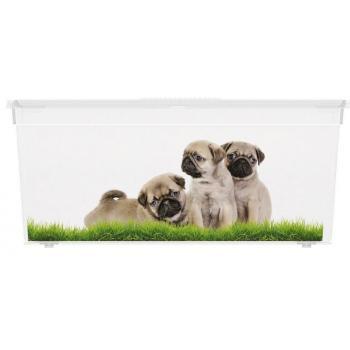 Větší úložný plastový box s víkem, průhledný + potisk psi, 27 L