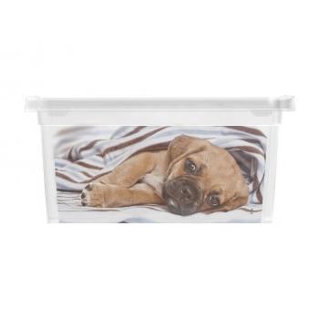 Menší úložný plastový box s víkem, průhledný + potisk psi, 2 L