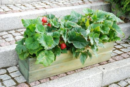 Dřevěný zahradní květináč / truhlík 64 cm, zelený